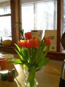 Hanna's get-well-flowers
