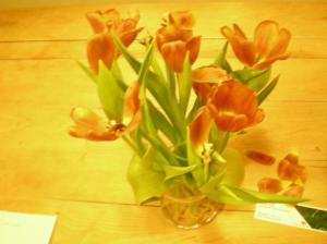 Hanna's Flowers